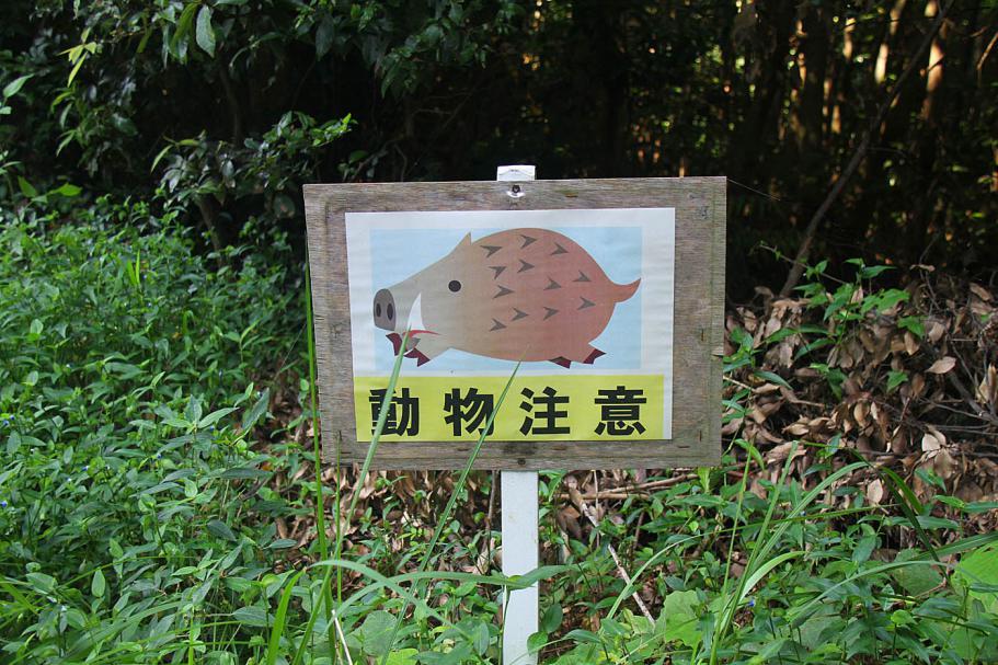 JA-Sasebo-07SEP14-45