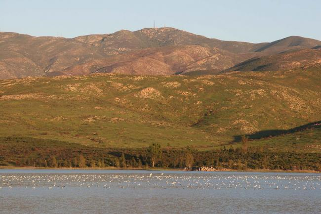 Otay Lake
