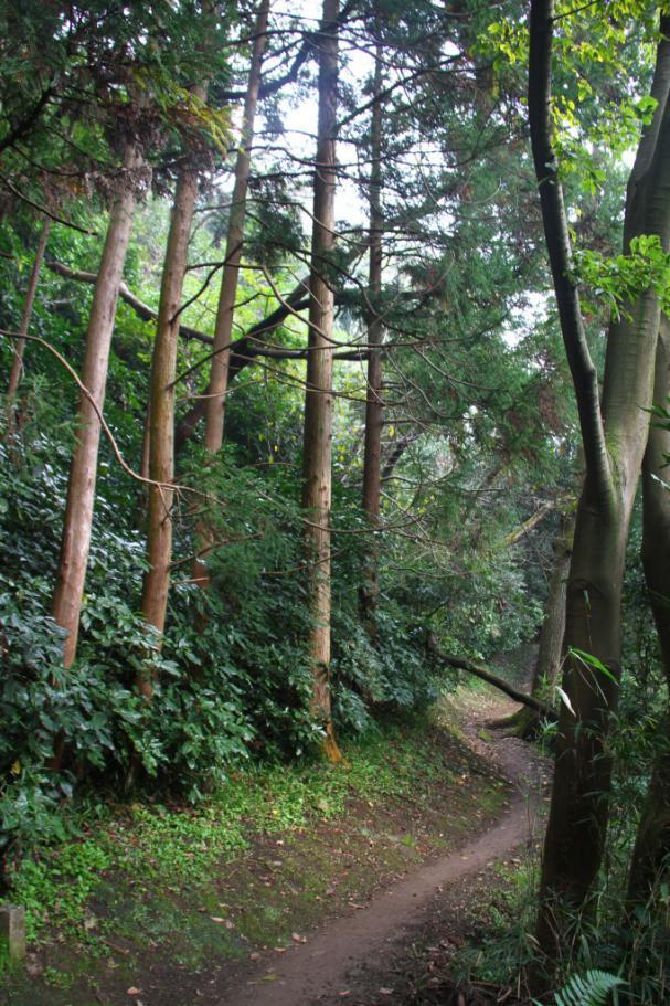 JA-Yokosuka-OCTNOV13-48