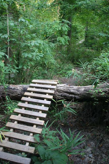 log ramp