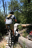images/Trails/Idyllwild/Idyllwild-5JUN05-Pub-18.jpg