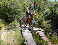 images/Trails/Idyllwild/Idyllwild-5JUN05-Pub-19.jpg