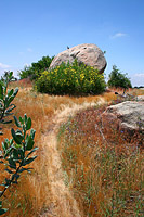 images/Trails/Idyllwild/Idyllwild-5JUN05-Pub-22.jpg
