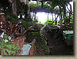 LakeAshi-3AUG04-08.JPG (119841 bytes)
