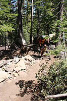 images/Trails/LakeTahoe/Tahoe-08JUL05-ChristmasValley-07.jpg
