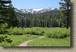 images/Trails/LakeTahoe/Tahoe-08JUL05-ChristmasValley-16.jpg