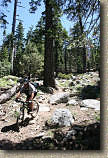 images/Trails/LakeTahoe/Tahoe-08JUL05-DHFromDriscollLake-02.jpg