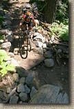 images/Trails/LakeTahoe/Tahoe-08JUL05-DHFromDriscollLake-04.jpg