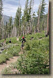 images/Trails/LakeTahoe/Tahoe-09JUL05-TRT-SpoonerToDiamondPk-19.jpg