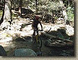 Miles riding through the creek