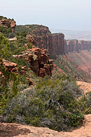 The Porcupine Rim Trail