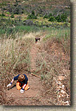 images/Trailwork/SycamoreCanyon-Trailwork-28MAY05-03.jpg