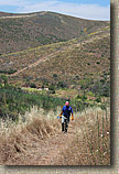 images/Trailwork/SycamoreCanyon-Trailwork-28MAY05-07.jpg