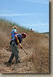 images/Trailwork/SycamoreCanyon-Trailwork-28MAY05-09.jpg